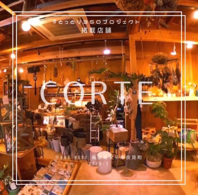 多肉植物は異次元だった!楽しみ方を教えてくれるオシャレな観葉植物店   CORTE